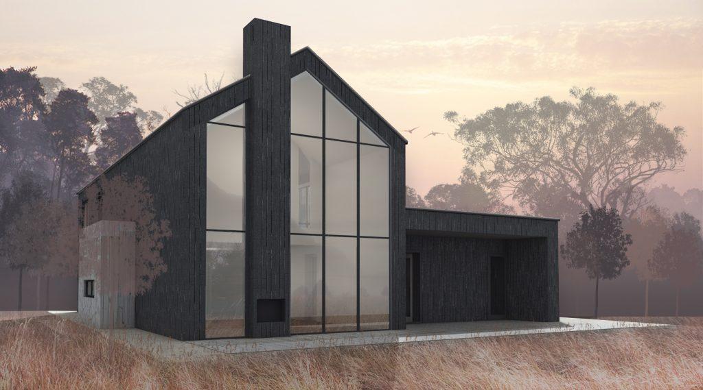Gyvenamasis namas Kaišiadoryse - vaizdas iš kiemo